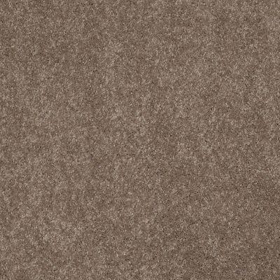 Anderson Tuftex Embrace Misty Taupe 00575_Z6865