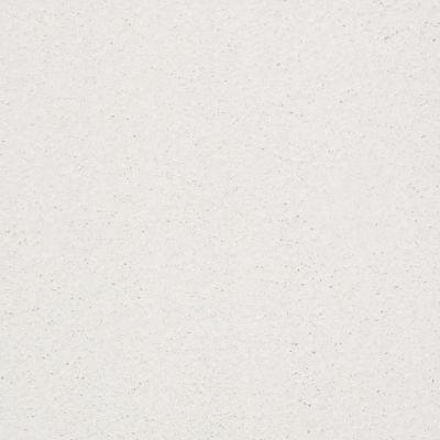 Anderson Tuftex Ravishing Snowbound 00111_Z6866