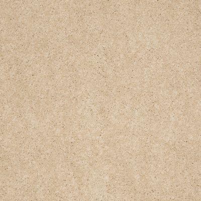 Anderson Tuftex Ravishing Spun Silk 00212_Z6866