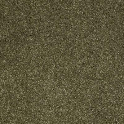 Anderson Tuftex Ravishing New Willow 00335_Z6866