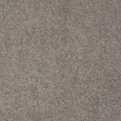 Anderson Tuftex Ravishing Heavy Metal 00555_Z6866