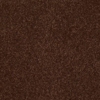 Anderson Tuftex Ravishing Decaf 00776_Z6866