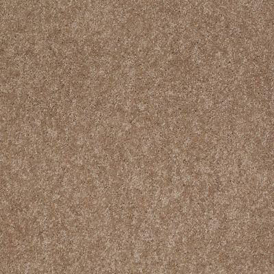 Anderson Tuftex Ravishing Hazelnut 00783_Z6866