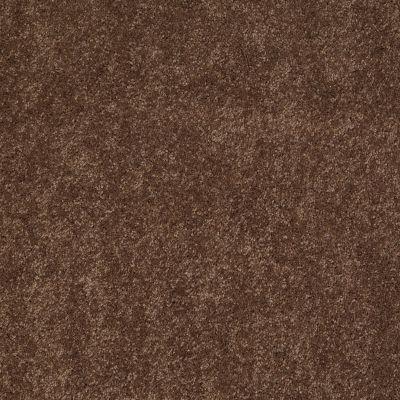 Anderson Tuftex Ravishing Hot Cocoa 00785_Z6866