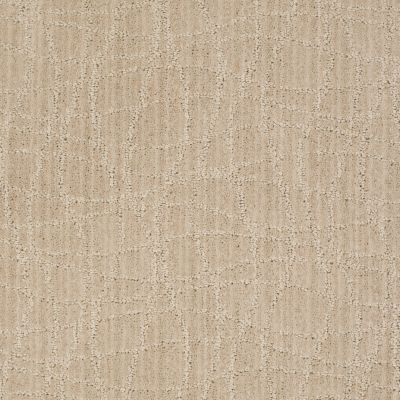 Anderson Tuftex Twist Birch 00112_Z6869