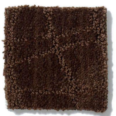 Anderson Tuftex Twist Catskill Brown 00777_Z6869