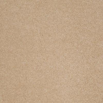 Anderson Tuftex True Inspiration Nevada Sand 00162_Z6872