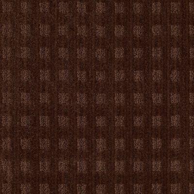 Anderson Tuftex Cameo Catskill Brown 00777_Z6875