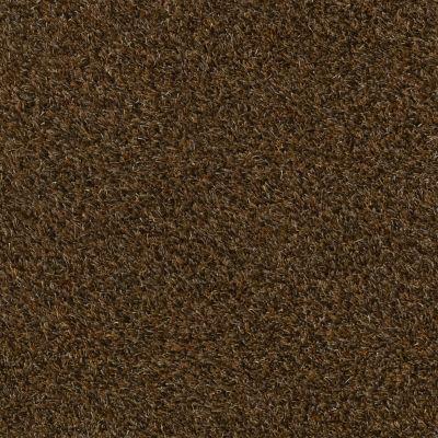 Anderson Tuftex Swag Flatland 00737_Z6880