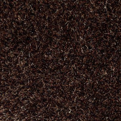Anderson Tuftex Swag Cocoa Quartz 00779_Z6880