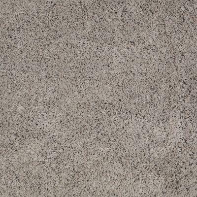 Anderson Tuftex Celeb Gray Whisper 00553_Z6881