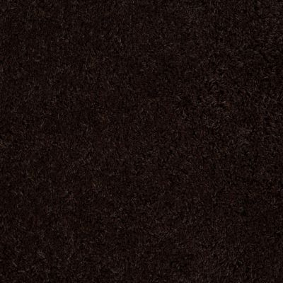 Anderson Tuftex Celeb Chocolate Flip 00779_Z6881