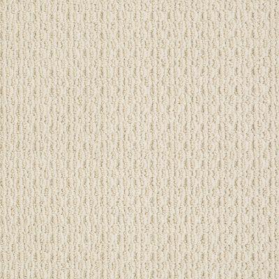 Anderson Tuftex Classics Splendid Moment Brushed Ivory 00111_Z6883
