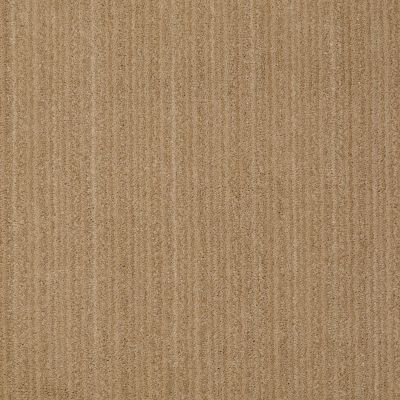 Anderson Tuftex Shadow Hills Crushed Cashew 00263_Z6887