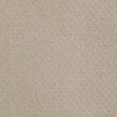 Anderson Tuftex Classics Mar Vista Shy Beige 00112_Z6899