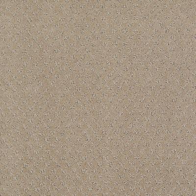 Anderson Tuftex Classics Mar Vista Sandstorm 00173_Z6899
