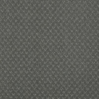 Anderson Tuftex Classics Mar Vista Harbor Seal 00359_Z6899