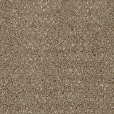 Anderson Tuftex Classics Mar Vista Mystic Brown 00756_Z6899