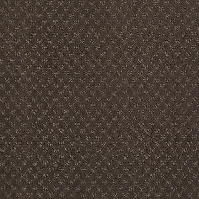 Anderson Tuftex Classics Mar Vista Chocolate Curl 00757_Z6899