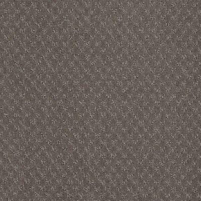 Anderson Tuftex Classics Mar Vista Mink 00792_Z6899