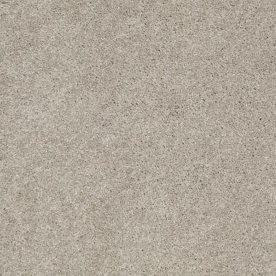 Anderson Tuftex Serendipity II Silver Leaf 00541_Z6942