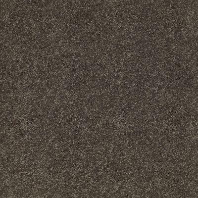 Anderson Tuftex Classics Serendipity II Worn Pewter 00556_Z6942
