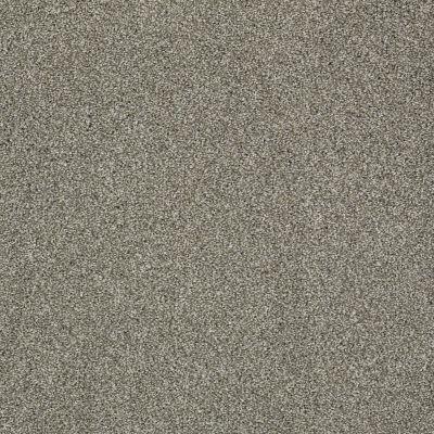 Anderson Tuftex Cooper Moondust 00710_Z6944