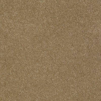 Anderson Tuftex Sasha Maple Glaze 00202_Z6945