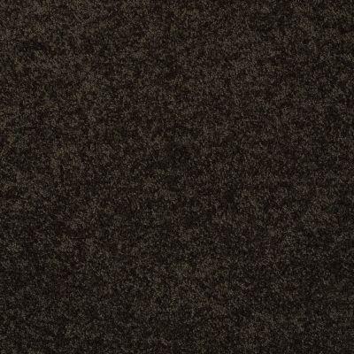 Anderson Tuftex Sasha Bristol 00704_Z6945