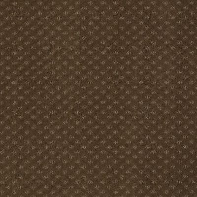 Anderson Tuftex Shadow Truffle 00723_Z6947