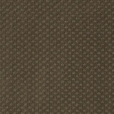 Anderson Tuftex Shadow Rio Grande 00732_Z6947