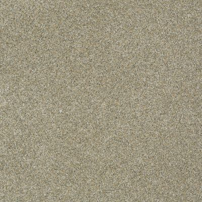 Anderson Tuftex Izzy Inca Gold 00115_Z6950
