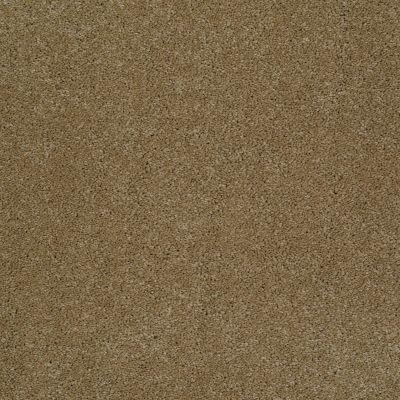 Anderson Tuftex Izzy Maple Glaze 00202_Z6950