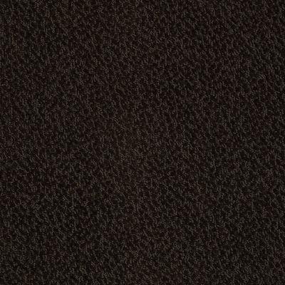 Anderson Tuftex Skippy Espresso 00724_Z6954