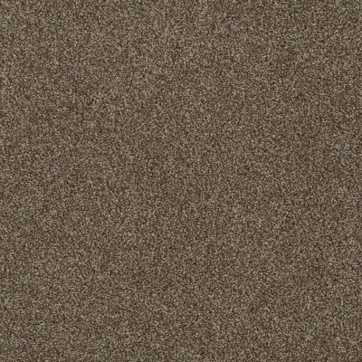 Anderson Tuftex Gus Cocoa Bean 00714_Z6956