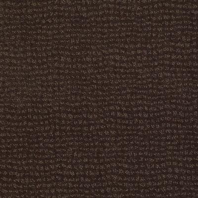 Anderson Tuftex Classics New Vibe Dark Earth 00759_Z6957
