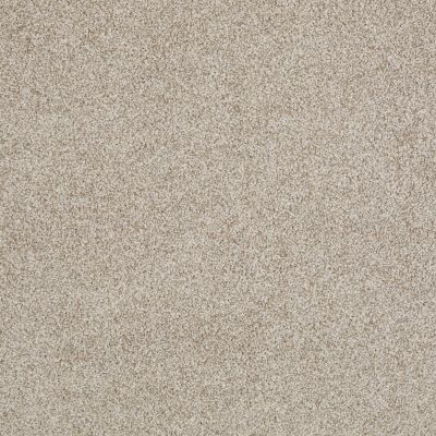 Anderson Tuftex American Home Fashions Ferndale Travertine 00163_ZA786