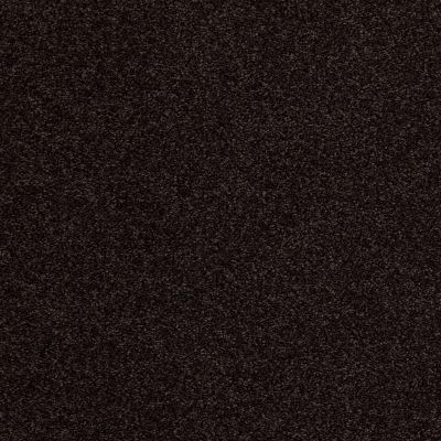 Anderson Tuftex American Home Fashions Ferndale Dark Espresso 00759_ZA786