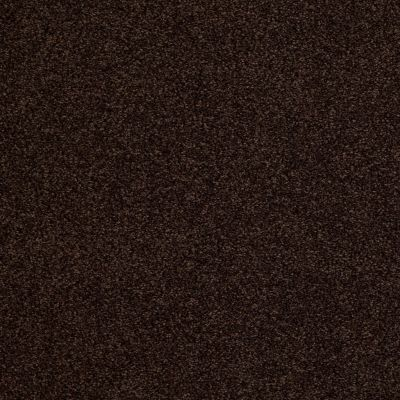 Anderson Tuftex American Home Fashions Ferndale Chocolate Drop 00777_ZA786