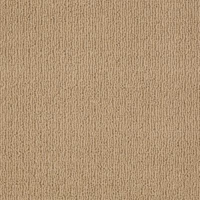 Anderson Tuftex American Home Fashions Another Place Tiger Eye 00228_ZA812