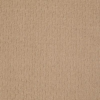 Anderson Tuftex American Home Fashions Ahead Of Time Baguette 00772_ZA820