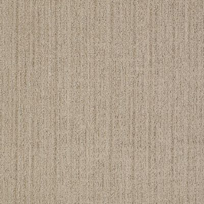 Anderson Tuftex American Home Fashions It's For You Sand Shell 00117_ZA864
