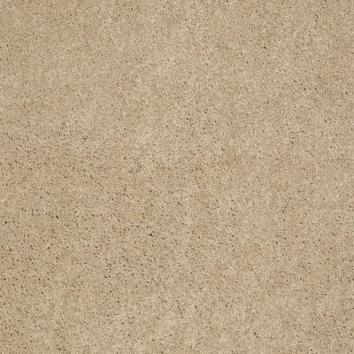 Anderson Tuftex American Home Fashions My Wonderland Touch Of Tan 00173_ZA866