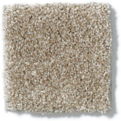 Anderson Tuftex American Home Fashions Fine Ambience Barely Taupe 00712_ZA867