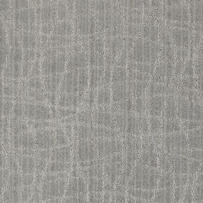 Anderson Tuftex American Home Fashions So Rare Polished Silver 00542_ZA869