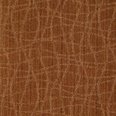 Anderson Tuftex American Home Fashions So Rare Melted Copper 00626_ZA869
