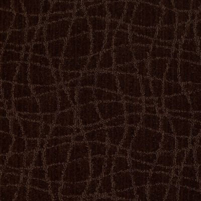 Anderson Tuftex American Home Fashions So Rare Cafe' Noir 00779_ZA869