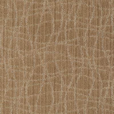 Anderson Tuftex American Home Fashions So Rare Fine Grain 00784_ZA869