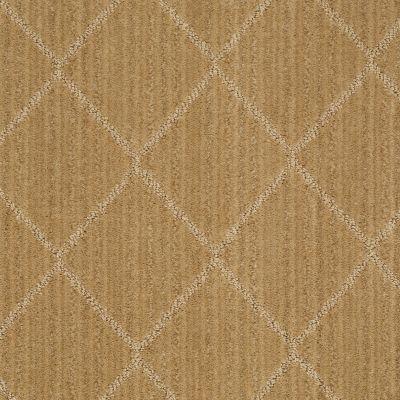 Anderson Tuftex American Home Fashions Love Spell Honey Grove 00223_ZA874
