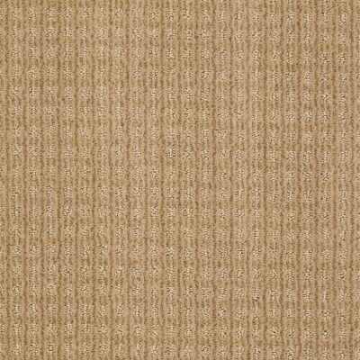 Anderson Tuftex American Home Fashions Living Large Tiger Eye 00223_ZA884
